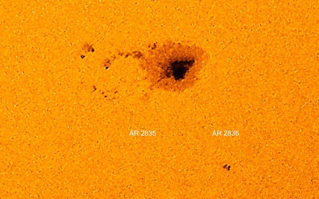 Il campo magnetico del Sole balla il twist